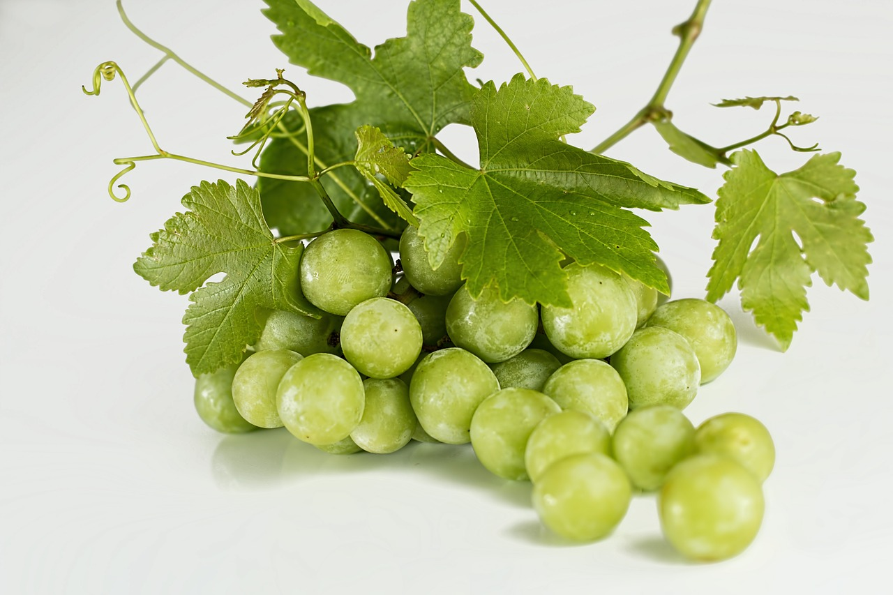 "ATGA CEO expects ""very good year"" for Aussie table grapes"