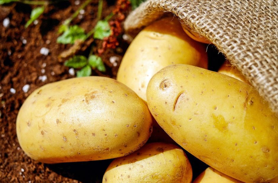 Australia and Victoria seed potatoes gain market access to Indonesia